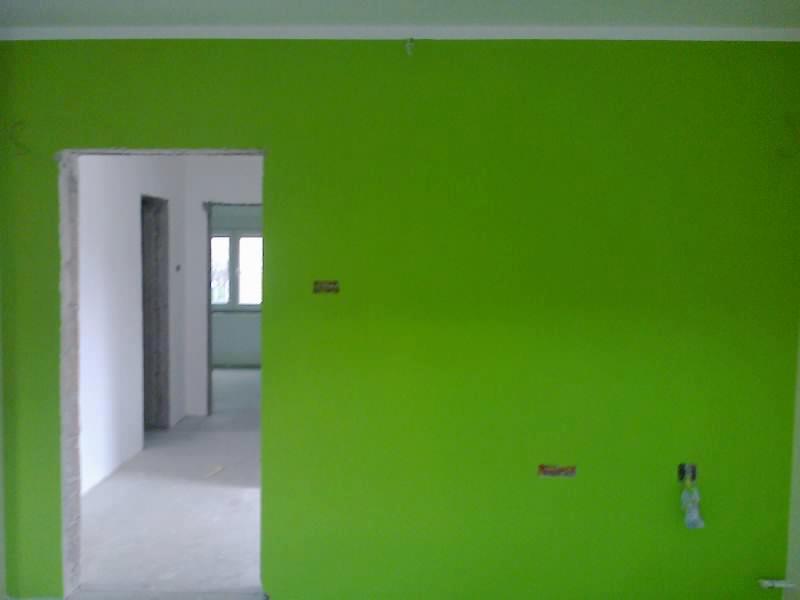 Kuca Na Altini Zeleni Zid